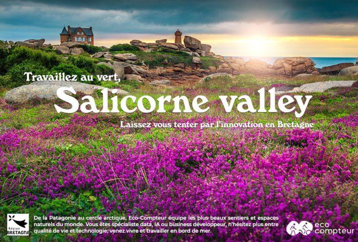 Salicorne Valley - Caraibzh - Kerlifornie - Galapagozh - Bretagne